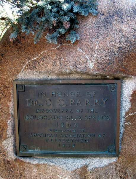 C.C. Parry Monument, Evergreen, commemorating the discovery of the Colorado Blue Spruce.