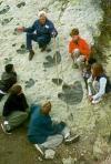 Longtime volunteer T Caneer teaches kids about dinosaur tracks.
